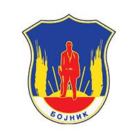 Општина Бојник